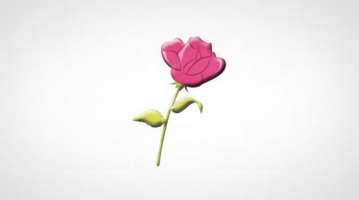 حزب الوردة بأكادير يصدر بيانا للرأي العام