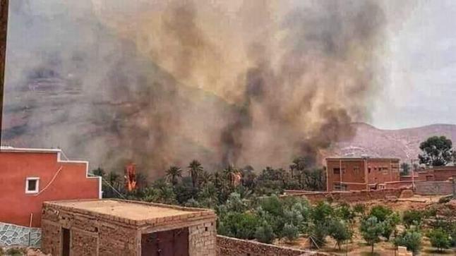 """حريق مهول يأتي على واحة """" أفرا """" في زاكورة"""