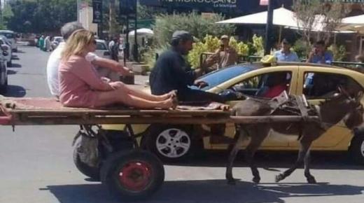 سياح يمتطون عربة مجرورة في مراكش