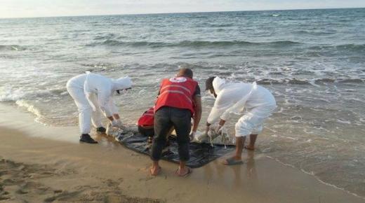 مياه الساحل تلفظ جثة مواطن في إنشادن