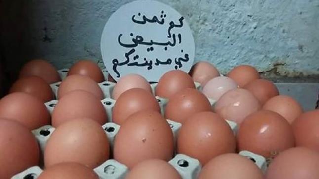 بعد زيت المائدة، البيض يتسلق سلم الأسعار، وارتفاع يقلق جيب المواطن