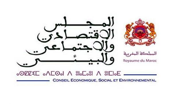 المجلس الاقتصادي والاجتماعي والبيئي يدعو إلى تحسين جودة التعليم عن بعد