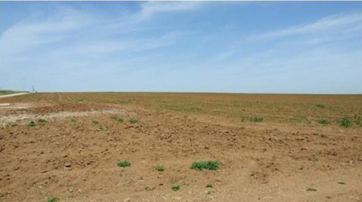 مطالب بالتحقيق في الترامي على 700 هكتارا من الأراضي ضواحي أكادير
