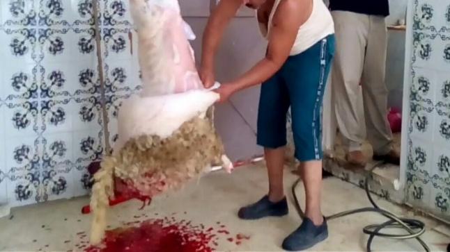 شاب يلقى مصرعه صبيحة العيد بعدما طعن نفسه خطأ اثناء عملية السلخ