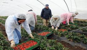 """""""البنك الدولي"""" يخصص دعما ماليا مهما لاستراتيجية الجيل الأخضر المعتمدة من طرف المغرب"""