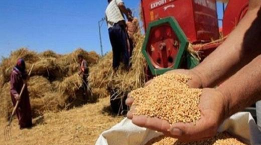 المصادقة على مشروعي مرسومين باستئناف العمل باستيفاء رسم الاستيراد المفروض على القمح اللين والصلب