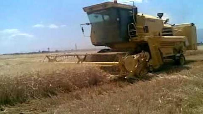 آلة حصاد تفصل رأس شاب عن جسده نواحي آشتوكة