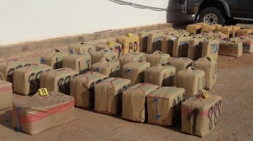 الرشيدية .. حجز طن واحد من مخدر الشيرا بضيعة فلاحية بمنطقة قروية (بلاغ DGSN)