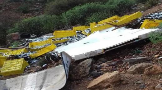 خسائر مادية في حمولة شاحنة محملة بالاخطبوط والسمك
