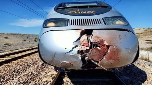 مواطن ينتحر ويتحول لأشلاء باعتراض قطار فائق السرعة
