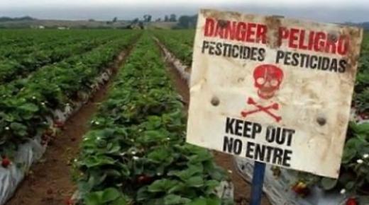 تحذير .. مبيدات كيماوية تشكل خطرا على صحة المنتجات الغذائية تم حجزها بميناء اكادير