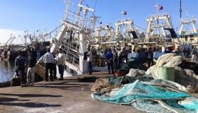 قرار يمنع ولوج العربات الثلاثية والصغيرة المخصصة بنقل السمك لميناء اكادير