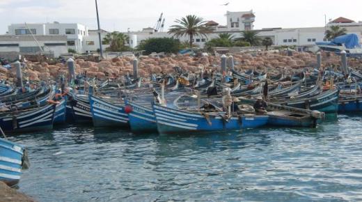 ضبط 200 كيلوغرام من السمك الغير مرخص بمدخل ميناء أكادير