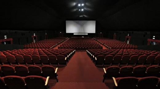 تكتل غرف المهن السينمائية يدعو وزارة الثقافة إلى وضع برنامج استثنائي لدعم القطاع